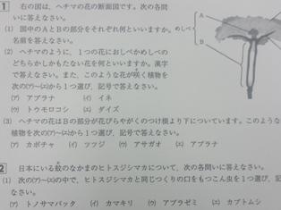 20180511⑤.JPG